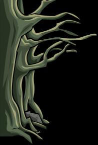 nature/arbres - 5