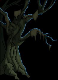 nature/arbres - 6