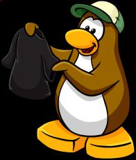 pingouins/brun - 11