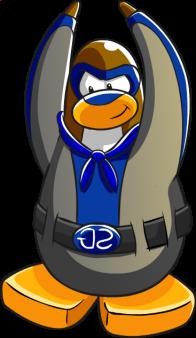 pingouins/brun - 15