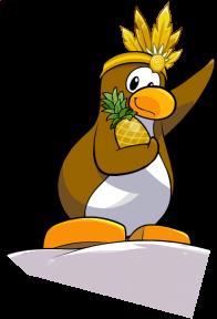 pingouins/brun - 30