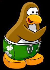 pingouins/brun - 5