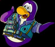pingouins/mauve - 78