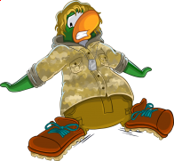 pingouins/vert - 15