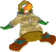 pingouins/vert - 16