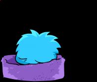 puffles/bleu - 29