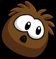 puffles/brun - 4